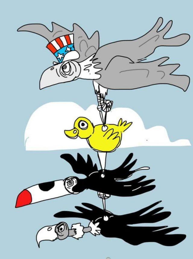 aves imperialistas-640x858