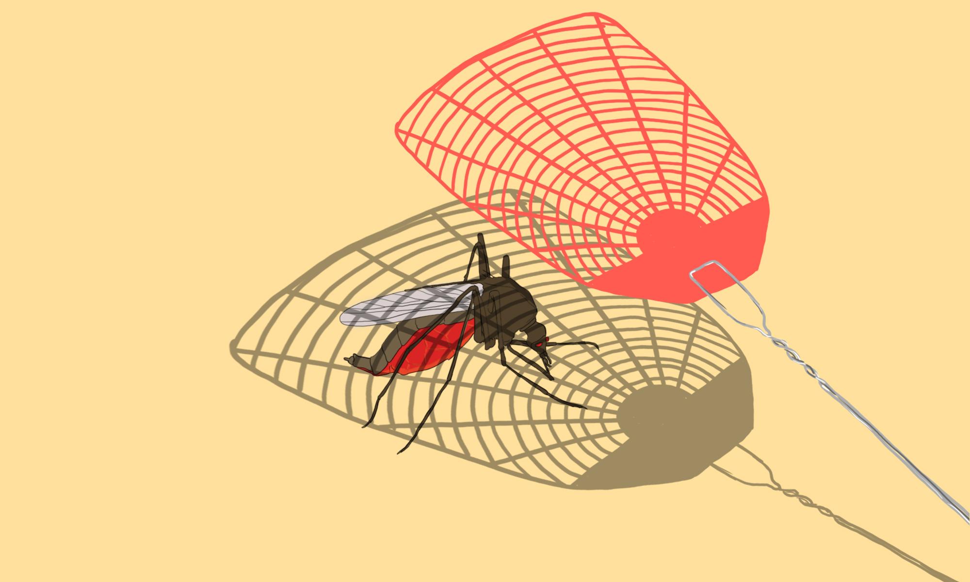 fly swatter china malaria